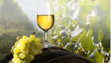 Domaine Chardonnay Chablis